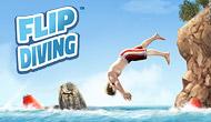Jouer à Flip Diving