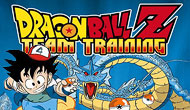 Dragon Ball Z : Team Training